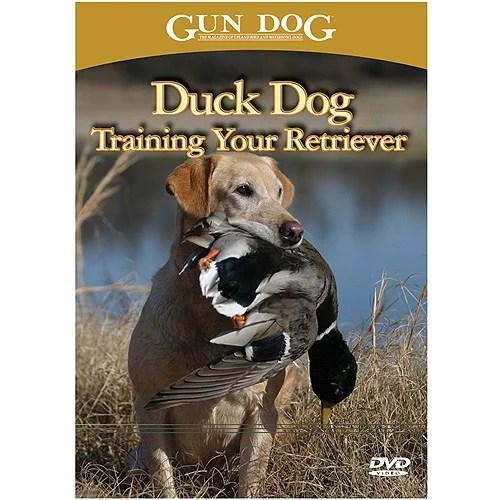 The Dog Training DVD Advantage