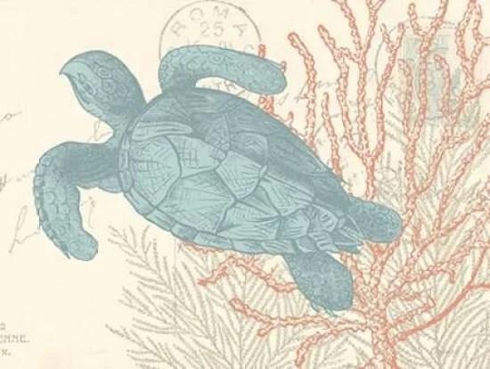 sea turtle poster print by n harbick