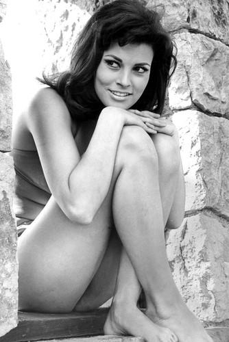 raquel welch stunning barefoot pin up in bikini seated on wall 24x36 poster