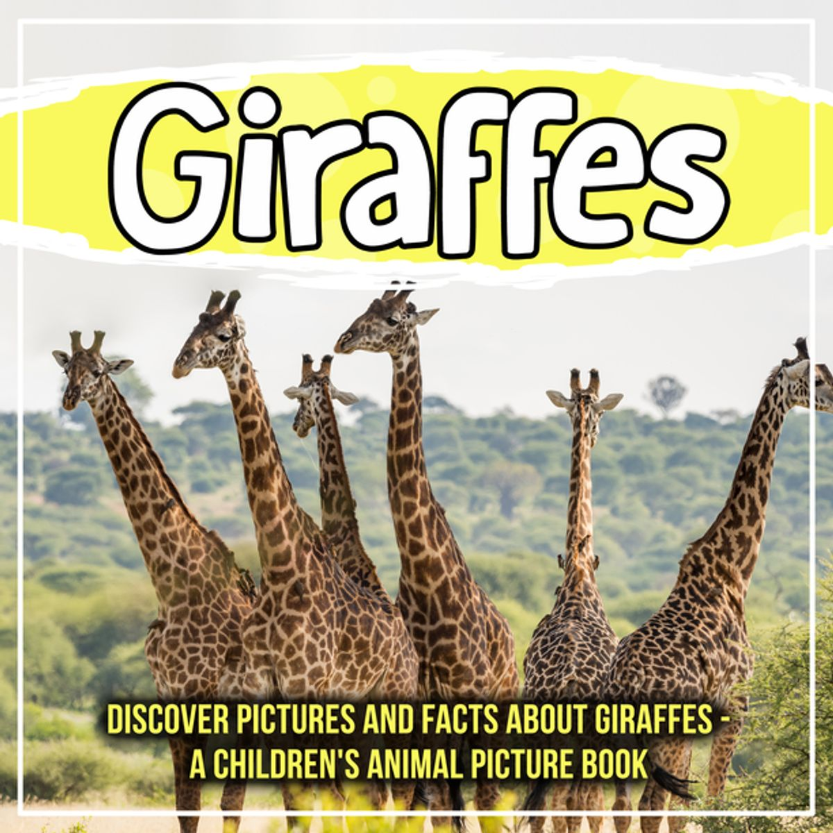 Giraffes Discover Pictures And Facts About Giraffes