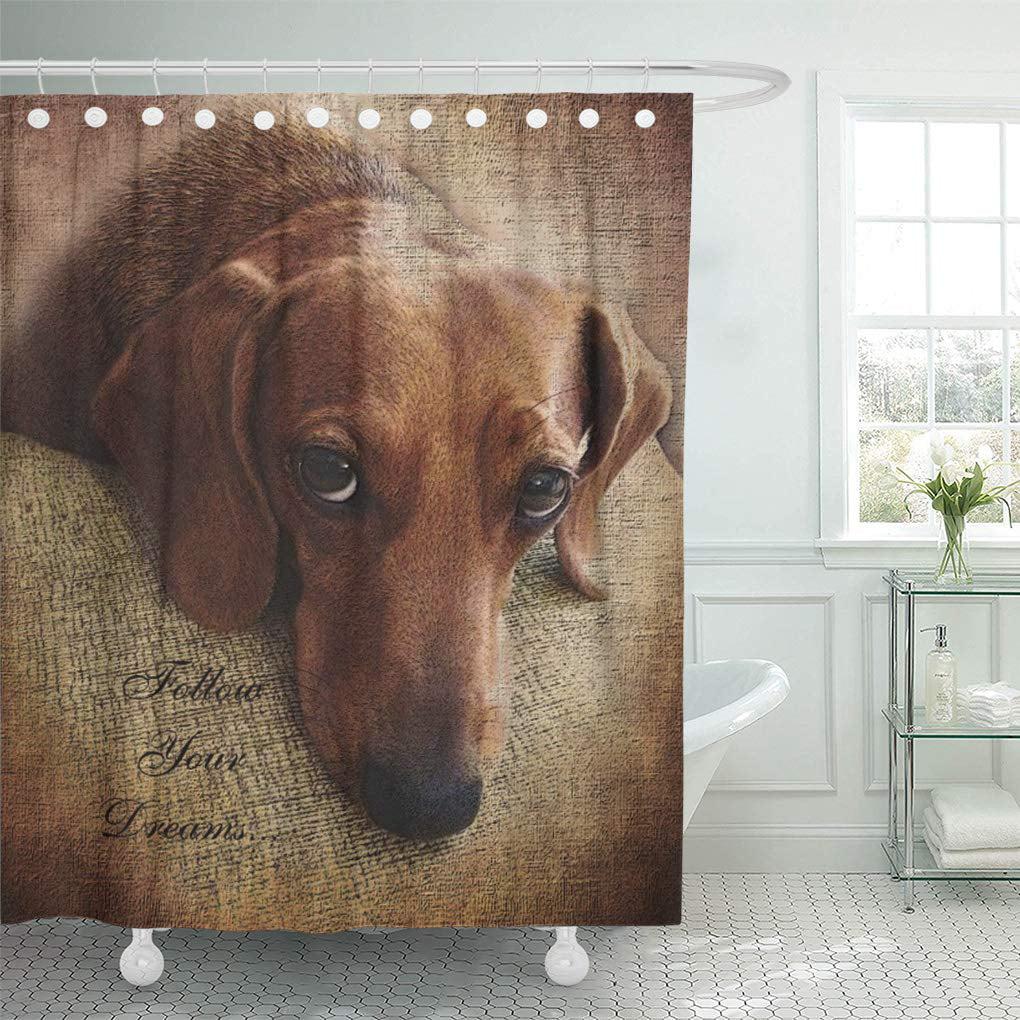 atabie dog dachshund portrait doxie hound pet burlap sad shower curtain 60x72 inch walmart com