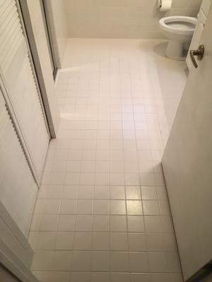 homax tile guard silicone tile grout sealer 4 3 ounce