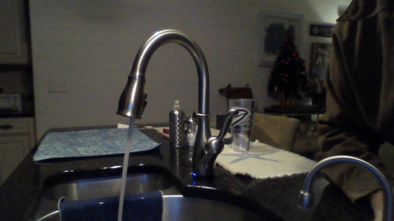 delta leland single handle pull down kitchen faucet in spotshield stainless 9178t sp dst