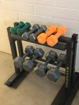 gold s gym 24 utility rack