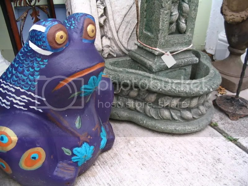 Frog In Front of Alternative Furnishings