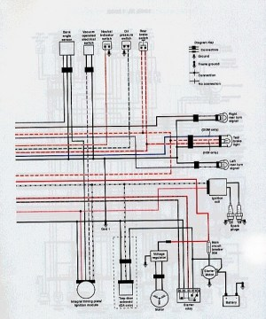 Mildred Patricia Baena: buell wiring diagram
