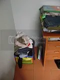 el cesto de la ropa sucia
