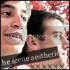 The Scene Aesthetic