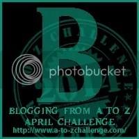 photo B_zps55d2642c.jpg