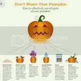 photo pumpkin1_zpsf75f578e.jpg