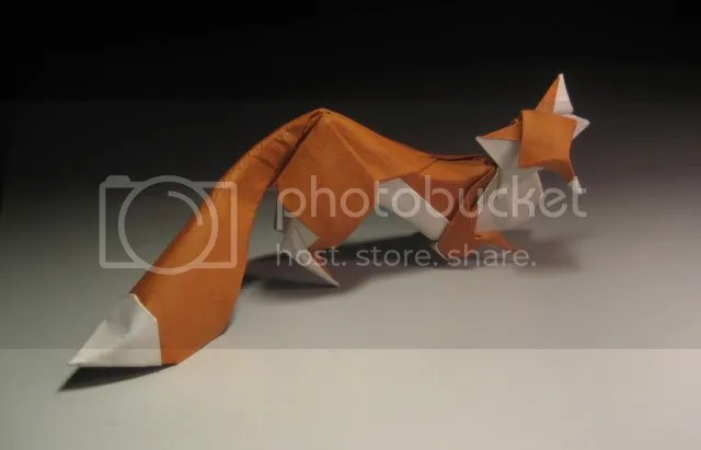 Fox by Hoàng Tiến Quyết