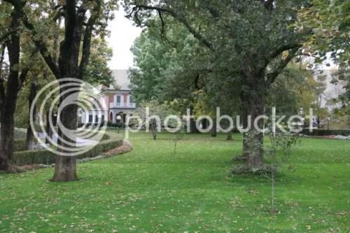 Selmo Park