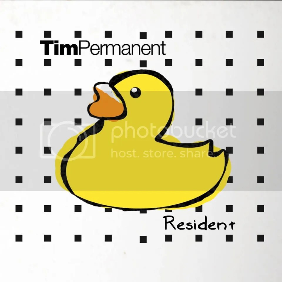 TimPermanent