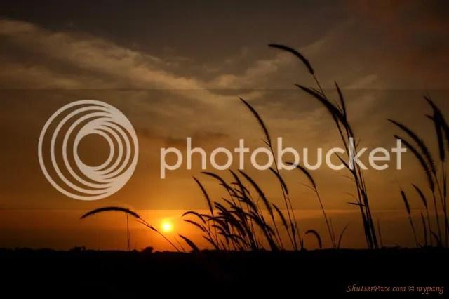 https://i2.wp.com/i553.photobucket.com/albums/jj389/anacodam/sunset2.jpg