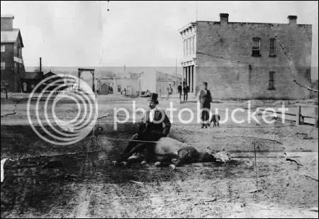 Dead horse in Sheboygan