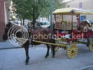 An arabber's horse and cart