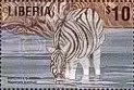 Zebra - Liberia