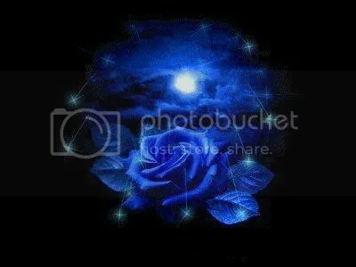 La Rosa Blu Ali Di Pergamena