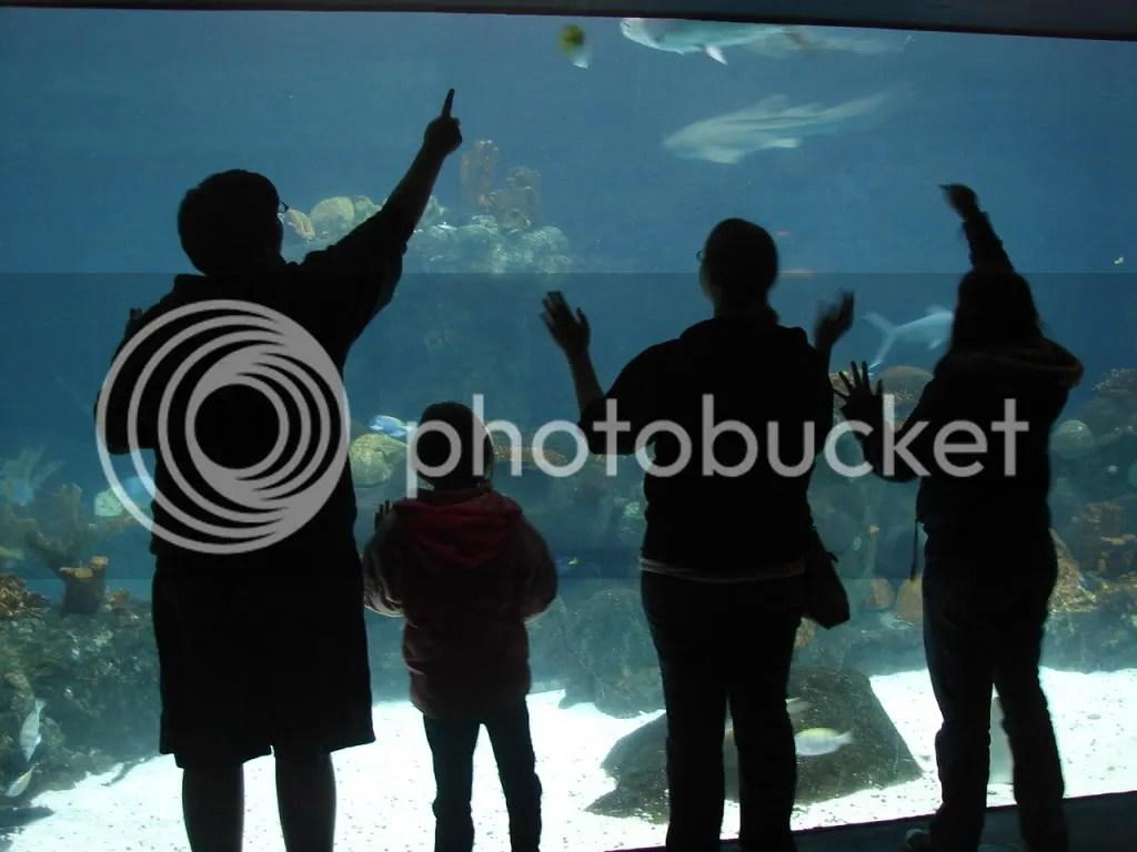 Kids n Fish