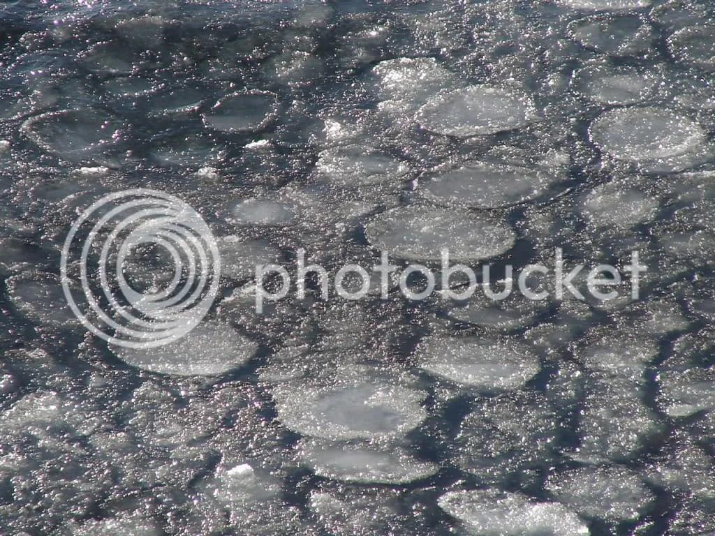 Pancake Ice (2010-01-02)