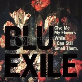 Ble & Exile cover