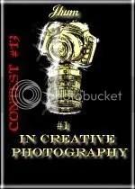 creative photography award