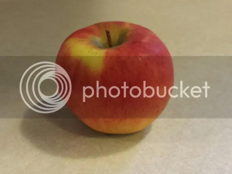 photo 2014-10-22 14.44.11_zpswrw8xh72.jpg