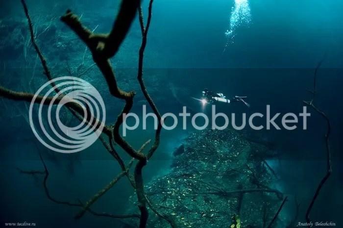Foto Sungai Dalam Laut 7