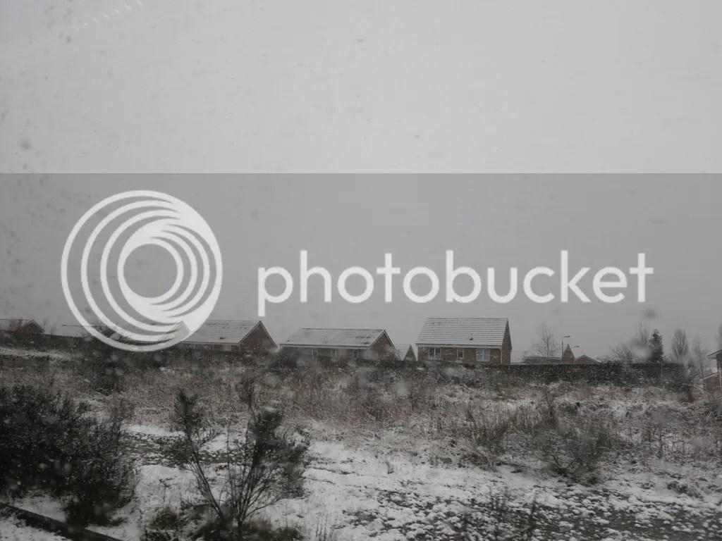 photo file-118.jpg