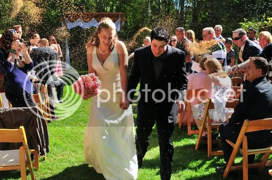 Bird seed throwing at wedding