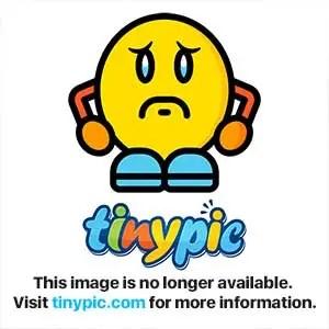 图片和视频托管的TinyPic