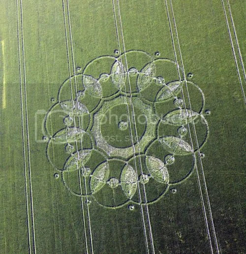 Codford St Peter,Wilts,crop circle