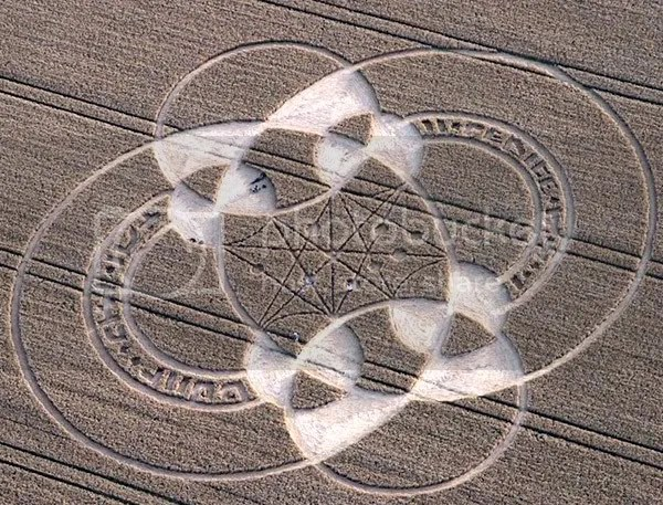 Alton Barnes,crop circle 2010