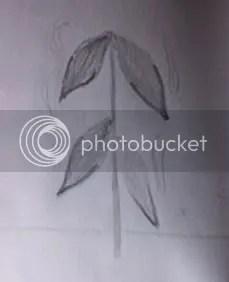 Singed Plant