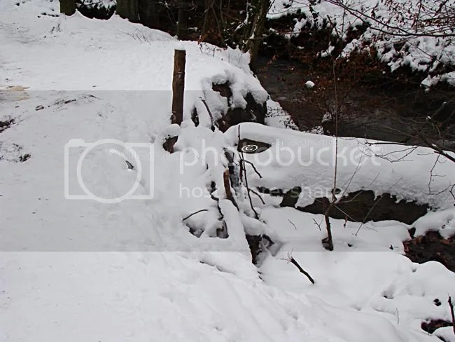 photo 2013-01-25-001_zps384a1f86.jpg