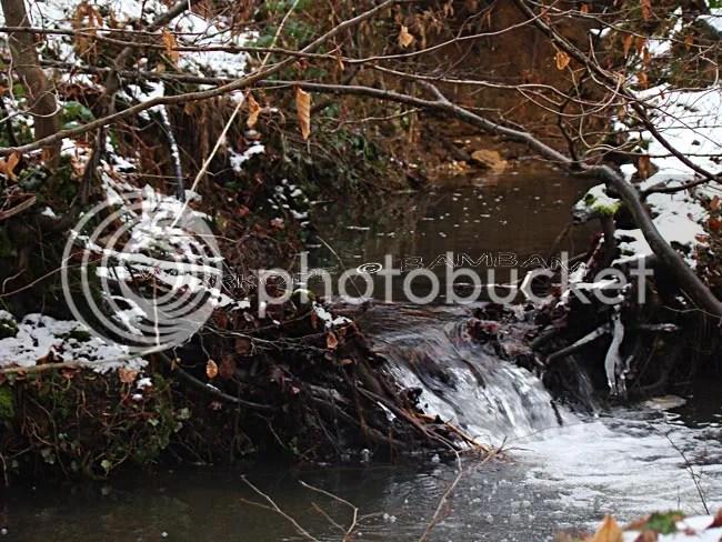 photo 2013-02-15-207_zps9137584d.jpg