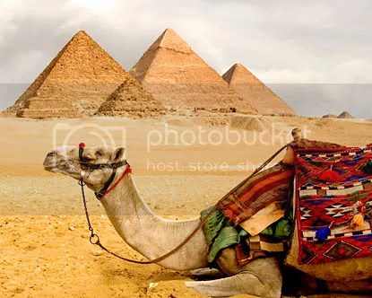 pyramids Pictures, Images and Photos