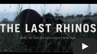 The Last Rhinos