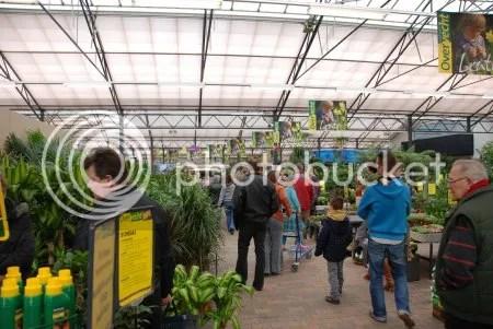 Breda,Woonboulevard,Tuincentrum,Overvecht,Vleesetende plant