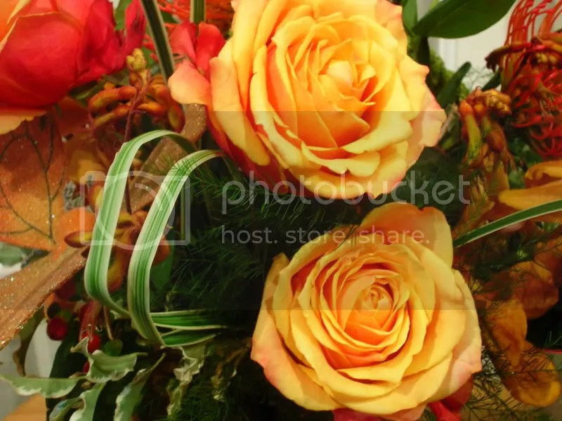 The cherry brandy roses were particularly good today