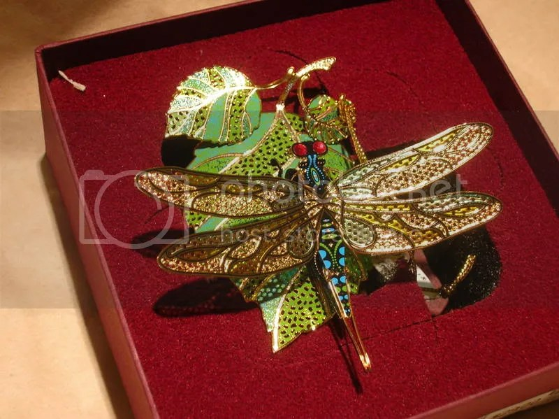 dragonfly with box
