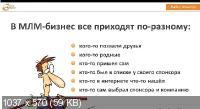 Стратегия запуска сетевого бизнеса в интернете. Видеокурс (2013)