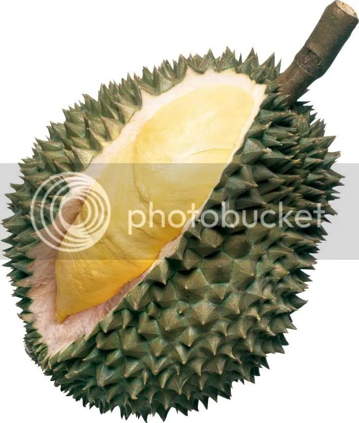 durian photo: durian durian.jpg