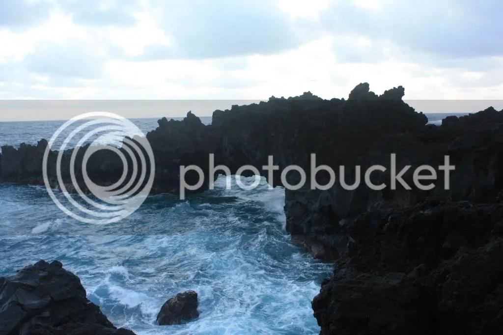 photo MauiTrip104_zps297d486a.jpg