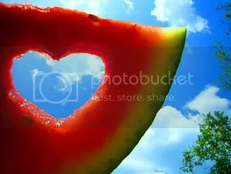 watermelon,photography,summer,love