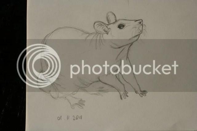 Sketchbook pt.11 - Naaktratje