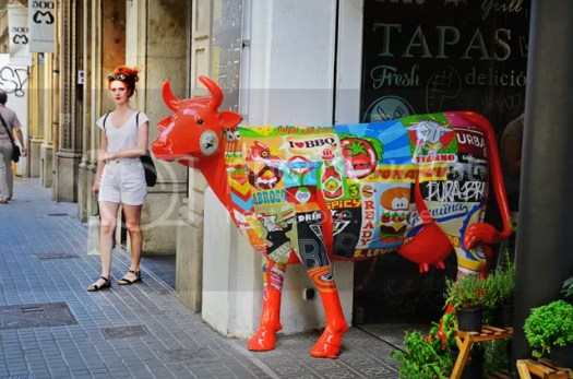 Spicy Orange Cow at Tapas Bar, Barcelona