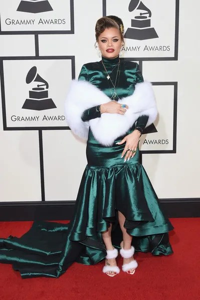 photo 58thGRAMMYAwardsArrivalscJGfL7IKteDl.jpg