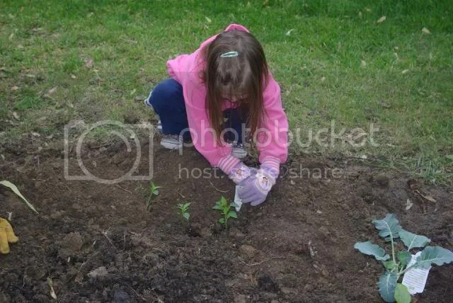 Cami planting peppers