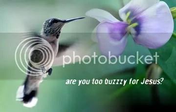 hummingsz